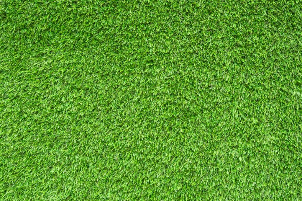 הדבקת דשא סינטטי